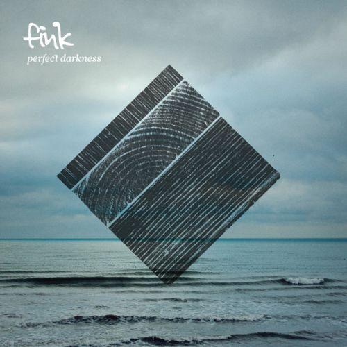 Fink_2011_Perfect_Darkness